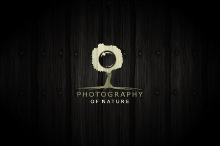 photography-logo-design-nature