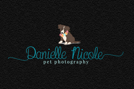 custom-photography-logo-nicole