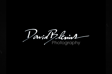 custom-photography-logo-design-ideas-david