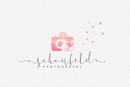 photography-logo-design-ideas-schen